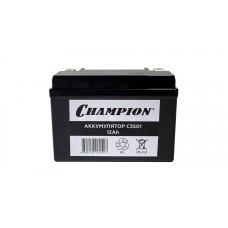 Аккумулятор CHAMPION GG4800 7000 7200 7500  12V 12Ah 150/130/85мм